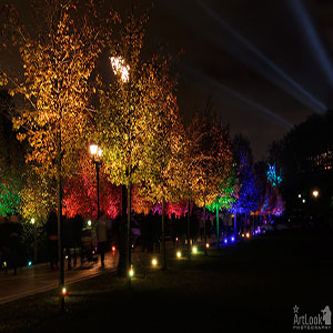 ALP 2013 1008 161 Colorful Lighting Of Tree Alley In Tsaritsyno Park Moscow Circle Of Light